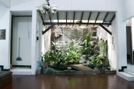 plants-interiors-e1314819001254